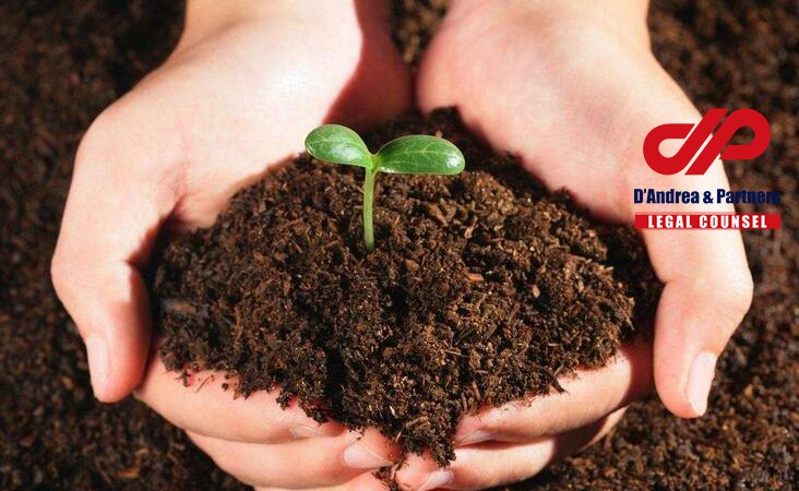Law on Soil Pollution Prevention and Control Issued