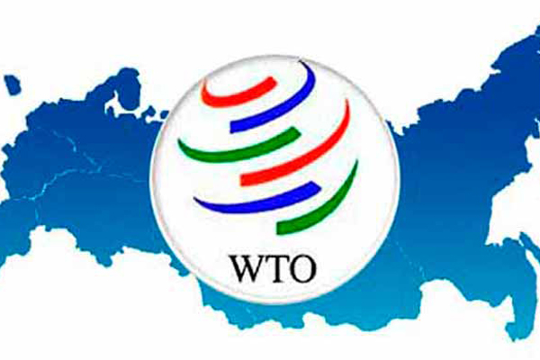 WTO Appellate Body Crisis: Stuck Between a Rock and a Hard Place