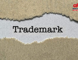 Trademark Registration at Customs – A Further Guarantee for Trademark Protection in China